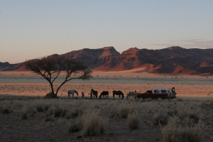 namibia_early_morning_camp.jpg